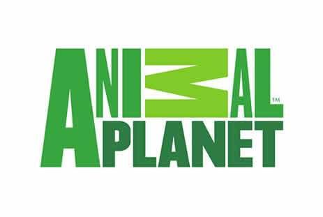 Animal-Planet-logo1